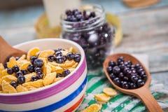 Δημητριακά με το μύρτιλλο Στοκ Φωτογραφίες