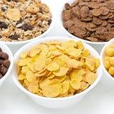Δημητριακά προγευμάτων κατατάξεων Στοκ Φωτογραφία