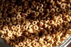 Δημητριακά προγευμάτων στην ελαφριά κινηματογράφηση σε πρώτο πλάνο πρωινού Στοκ Εικόνες