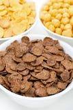 Δημητριακά σοκολάτας, δημητριακά προγευμάτων, κινηματογράφηση σε πρώτο πλάνο Στοκ φωτογραφίες με δικαίωμα ελεύθερης χρήσης