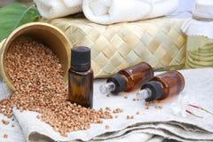 Δημητριακά φαγόπυρου Στοκ εικόνα με δικαίωμα ελεύθερης χρήσης