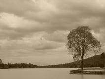 Δημιουργία φύσης Στοκ φωτογραφία με δικαίωμα ελεύθερης χρήσης