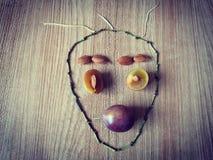 Δημιουργικές εικόνες φρούτων στοκ φωτογραφίες