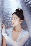Δημιουργική σύνθεση τέχνης και hairstyle ασιατικό όμορφο πορτρέτο &kapp Στοκ Εικόνες
