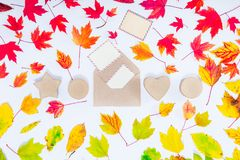 Δημιουργική τοπ σύνθεση φθινοπώρου άποψης Αναπτυχθείτε με να πετάξει έξω τις κενές κάρτες και η σειρά τα κιβώτια δώρων στα πεσμέν στοκ φωτογραφία με δικαίωμα ελεύθερης χρήσης