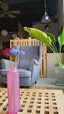 Δημιουργικός χώρος εργασίας γραφείων Στοκ Φωτογραφία