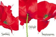 Δημιουργικό διανυσματικό σχέδιο κάλυψης φυλλάδιων Στοκ εικόνα με δικαίωμα ελεύθερης χρήσης