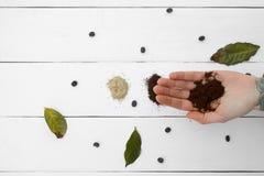 Δημιουργικό μυαλό, επίγειος καφές σε διαθεσιμότητα Στοκ εικόνες με δικαίωμα ελεύθερης χρήσης