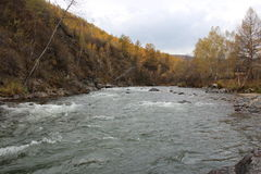 Δημοκρατία Altai Στοκ Εικόνα