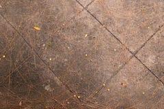 Δημόσιοι περίπατος και φύλλα Στοκ Φωτογραφίες