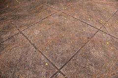 Δημόσιοι περίπατος και φύλλα Στοκ φωτογραφία με δικαίωμα ελεύθερης χρήσης