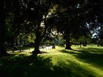 Δημόσιος κήπος της Βοστώνης, Βοστώνη, Μασαχουσέτη, ΗΠΑ Στοκ φωτογραφίες με δικαίωμα ελεύθερης χρήσης