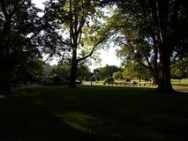 Δημόσιος κήπος της Βοστώνης, Βοστώνη, Μασαχουσέτη, ΗΠΑ Στοκ εικόνα με δικαίωμα ελεύθερης χρήσης