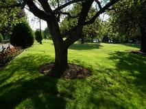 Δημόσιος κήπος της Βοστώνης, Βοστώνη, Μασαχουσέτη, ΗΠΑ Στοκ Εικόνα