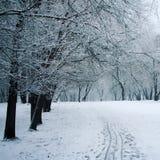 Διάβαση μέσω ενός χειμερινού πάρκου ηλικίας φωτογραφία Στοκ Εικόνες