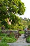 Διάβαση μέσω του κήπου Στοκ εικόνες με δικαίωμα ελεύθερης χρήσης