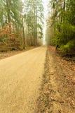 Διάβαση μέσω του misty δάσους φθινοπώρου στοκ εικόνες