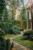 διάβαση μεταξύ των πράσινων θάμνων και σύγχρονος Στοκ Εικόνες