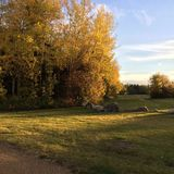 Διάβαση με τα δέντρα και τους βράχους φθινοπώρου στοκ εικόνες