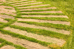 Διάβαση με τη φυσική πράσινη χλόη Στοκ φωτογραφία με δικαίωμα ελεύθερης χρήσης