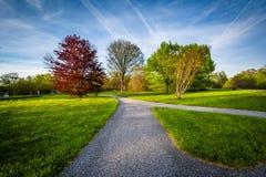Διάβαση πεζών και δέντρα στο δενδρολογικό κήπο Cylburn, στη Βαλτιμόρη, Μέρυλαντ στοκ φωτογραφία με δικαίωμα ελεύθερης χρήσης