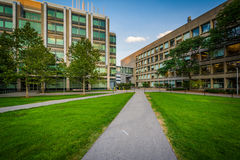 Διάβαση πεζών και σύγχρονα κτήρια, στο ίδρυμα της Μασαχουσέτης Στοκ εικόνες με δικαίωμα ελεύθερης χρήσης