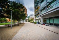 Διάβαση πεζών και σύγχρονα κτήρια, στο ίδρυμα της Μασαχουσέτης Στοκ φωτογραφία με δικαίωμα ελεύθερης χρήσης