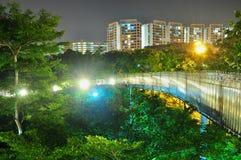 Διάβαση πεζών που περιβάλλεται από τα δέντρα τή νύχτα Στοκ Φωτογραφίες