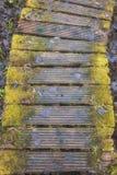 Διάβαση πεζών στη λίμνη Coldwater Στοκ φωτογραφία με δικαίωμα ελεύθερης χρήσης