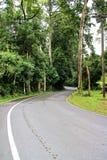 Διάβαση πεζών στο εθνικό πάρκο Kao Yai, Ταϊλάνδη Στοκ φωτογραφία με δικαίωμα ελεύθερης χρήσης