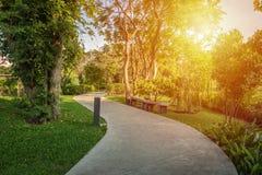 Διάβαση πεζών στο πάρκο στοκ εικόνες