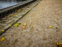Διάβαση πεζών το φθινόπωρο Στοκ φωτογραφία με δικαίωμα ελεύθερης χρήσης