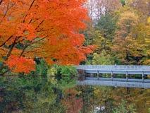διάβαση πεζών φθινοπώρου Στοκ εικόνα με δικαίωμα ελεύθερης χρήσης