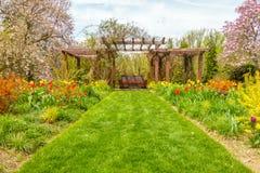 Διάβαση πεζών χλόης μεταξύ των λουλουδιών Στοκ Εικόνες