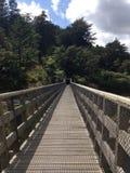 Διάβαση πεζών Karangahake Overbridge στοκ εικόνα με δικαίωμα ελεύθερης χρήσης