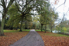 Διάβαση σε ένα τοπικό πάρκο Στοκ εικόνα με δικαίωμα ελεύθερης χρήσης