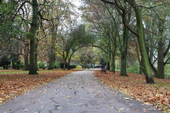 Διάβαση σε ένα τοπικό πάρκο Στοκ φωτογραφία με δικαίωμα ελεύθερης χρήσης
