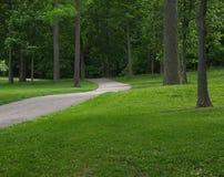 διάβαση στα δάση Στοκ Εικόνα