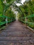Διάβαση στο δάσος στοκ φωτογραφίες