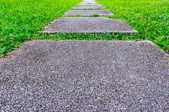 Διάβαση στο πράσινο γυαλί στο πάρκο Στοκ φωτογραφίες με δικαίωμα ελεύθερης χρήσης