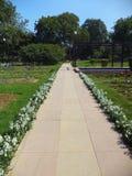 Διάβαση στο Rose Garden, Νέο Δελχί Στοκ φωτογραφία με δικαίωμα ελεύθερης χρήσης