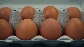 Διάβαση των αυγών στο κιβώτιο αυγών φιλμ μικρού μήκους