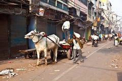 Διάγραμμα ΒΟΔΙΩΝ στις στενές οδούς του παλαιού Δελχί Στοκ Φωτογραφίες