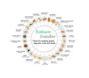 Διάγραμμα για την ενυδάτωση των σιταριών, των οσπρίων, των καρυδιών και των σπόρων Στοκ εικόνα με δικαίωμα ελεύθερης χρήσης