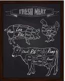 Διάγραμμα τμημάτων μιας αγελάδας και ενός κοτόπουλου χοίρων Στοκ φωτογραφίες με δικαίωμα ελεύθερης χρήσης