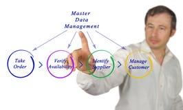 Διάγραμμα του Master Data Management στοκ φωτογραφία με δικαίωμα ελεύθερης χρήσης
