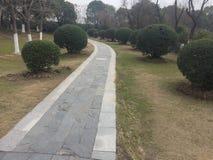 Διάδρομοι και διάδρομοι στο πάρκο στοκ εικόνες με δικαίωμα ελεύθερης χρήσης