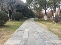 Διάδρομοι και διάδρομοι στο πάρκο στοκ εικόνα με δικαίωμα ελεύθερης χρήσης