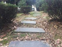 Διάδρομοι και διάδρομοι στο πάρκο στοκ φωτογραφία με δικαίωμα ελεύθερης χρήσης
