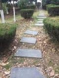 Διάδρομοι και διάδρομοι στο πάρκο στοκ εικόνες